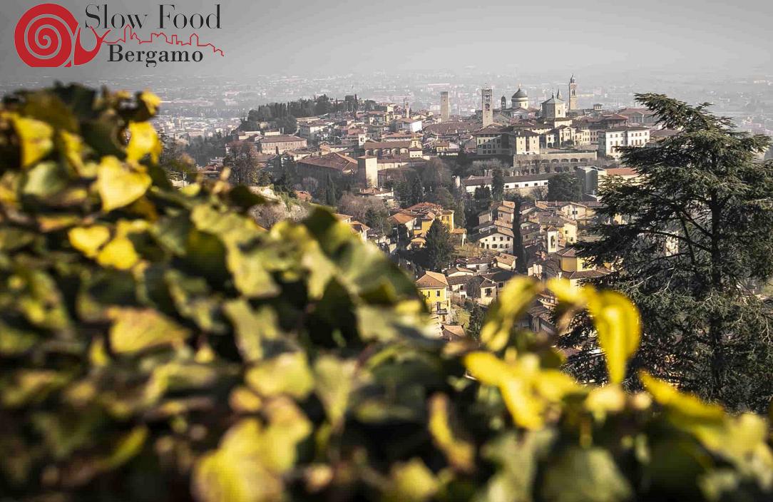 Bergamo per l'agricoltura e il cibo che vogliamo
